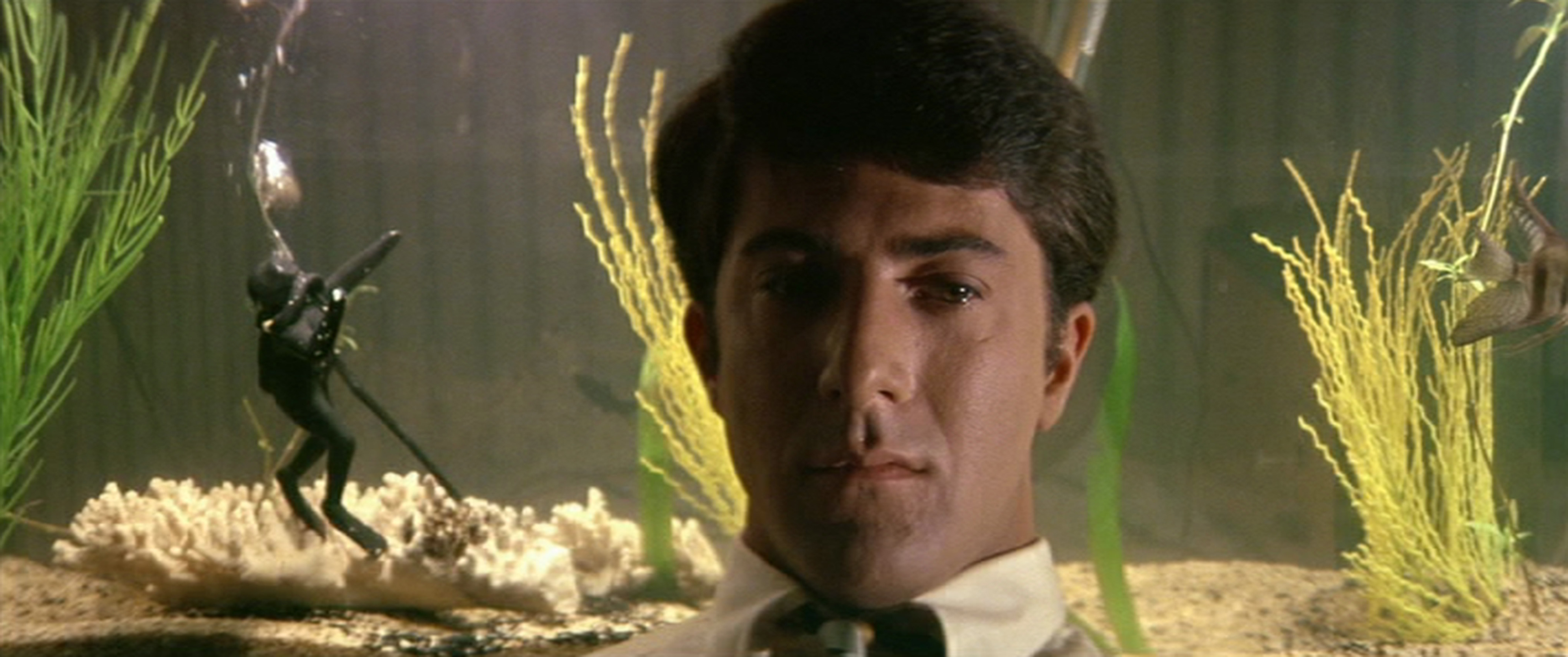 The Graduate (Courtesy: Rialto Pictures/Studiocanal)