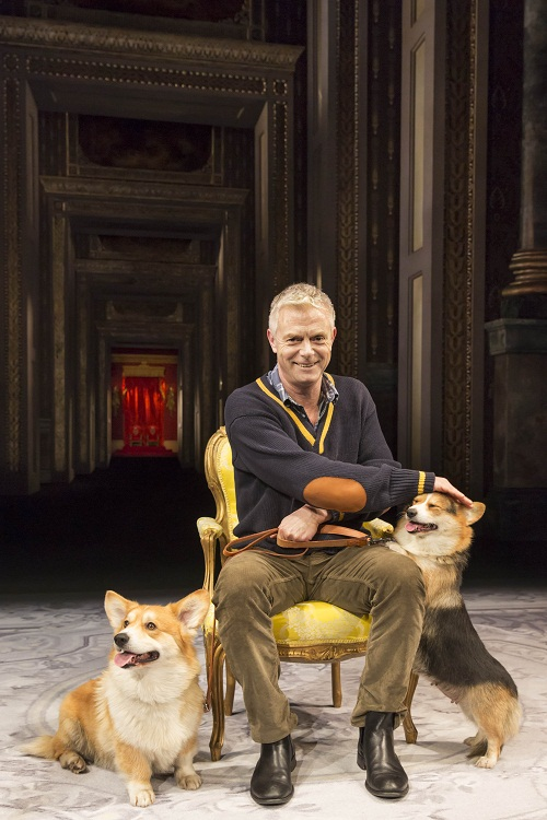 Director Stephen Daldry with corgis Rocky and Coco. Photo by Johan Persson.